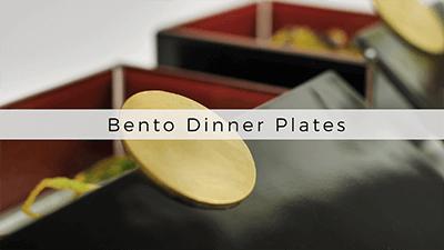 Bento dinner plates