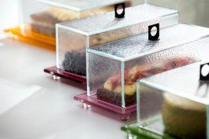 Rectangular Food Cloche